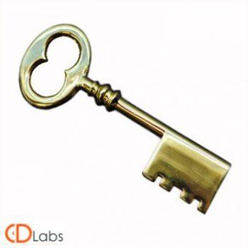 Металлическая флешка Ключ золотой