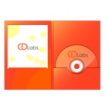 DVD DigiFile с просечкой