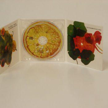 Печать на диске (Casual)